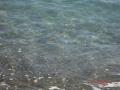 прозрачно море